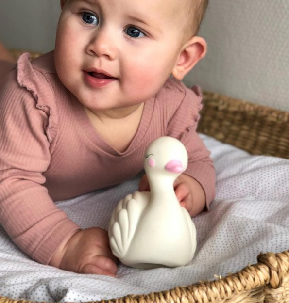 TTSWWH02-LR-8 teething toy swan