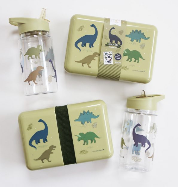 DBDIGR33-LR-5-Drink-bottle-Dinosaurs