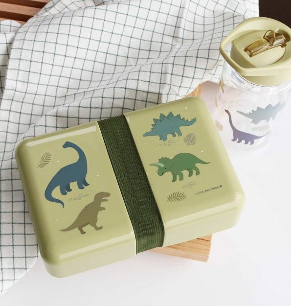 SBDIGR32-LR-7-Lunch-box-Dinosaurs